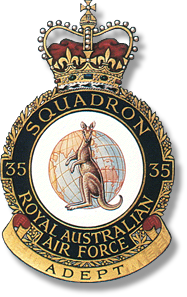 Official RTFV-35SQN Badge